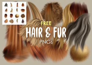 Free fur and hair png graphics clipart